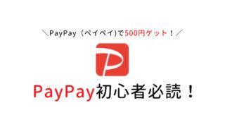 paypay初心者