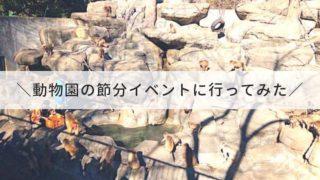 智光山公園_イベント
