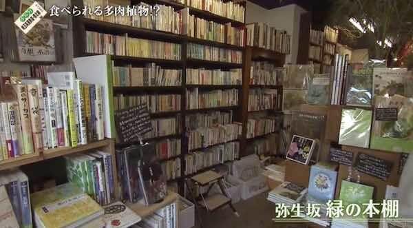 弥生坂_緑の本棚