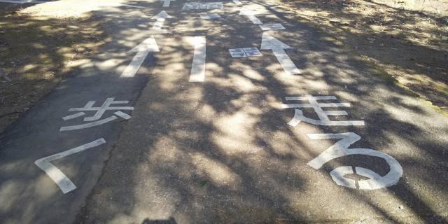 坂戸 千代田公園